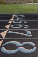running for beginners start line