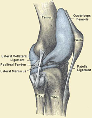 runners knee - patella femoral syndrome