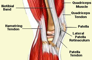 running injuries of the hamstring and knee