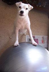 molly's ball..!